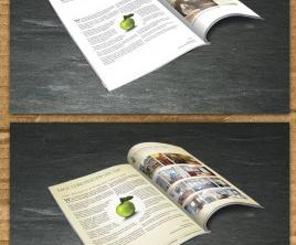 Half- Fold Brochure